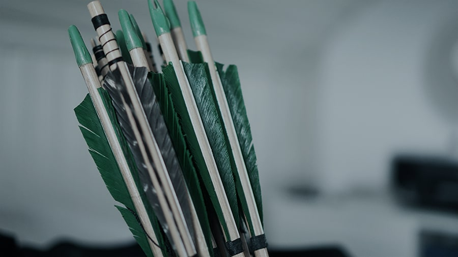 A group of the fletchings of arrows are shown, presumably bundled in a quiver